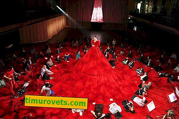 Najduža haljina na svijetu