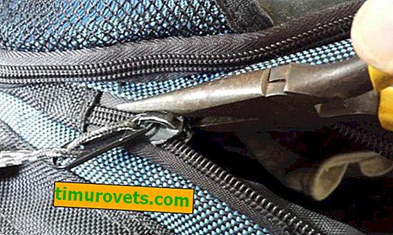 ¿Cómo insertar un perro en una cremallera en una bolsa?