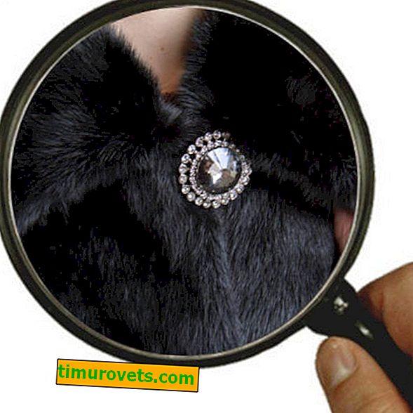 Hvordan syr du en knapp på en minkfrakk?