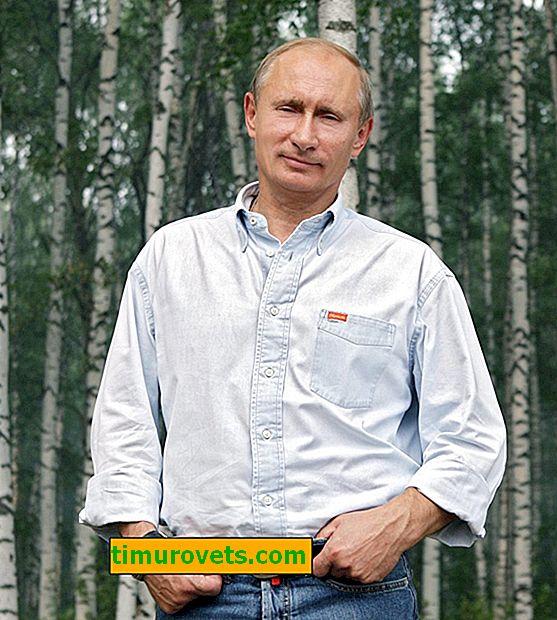 Gør Putin shopping?
