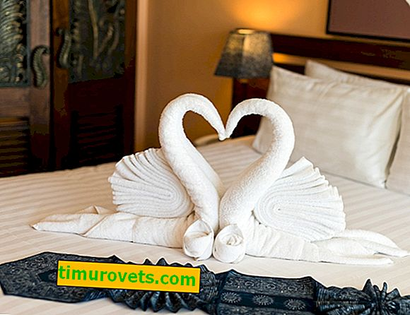 How to make a swan from a towel