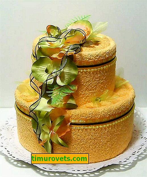 Torta za brisače, ki jo naredite sami