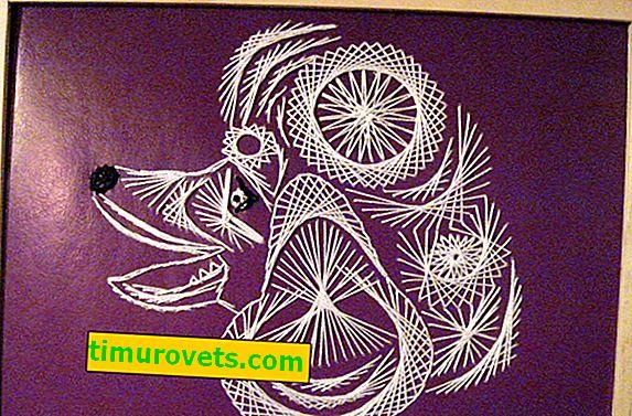 Borduurwerk op karton met draden en patronen voor kinderen