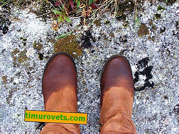 Kako obraditi cipele od antilop tako da se ne navlaže - 9 učinkovitih načina