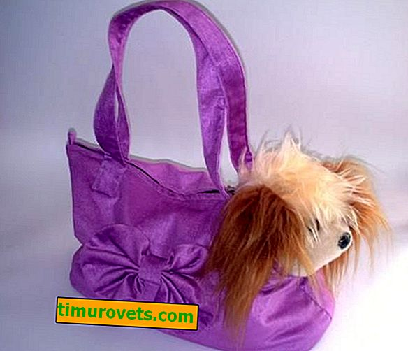 How to sew a do-it-yourself dog carrier bag