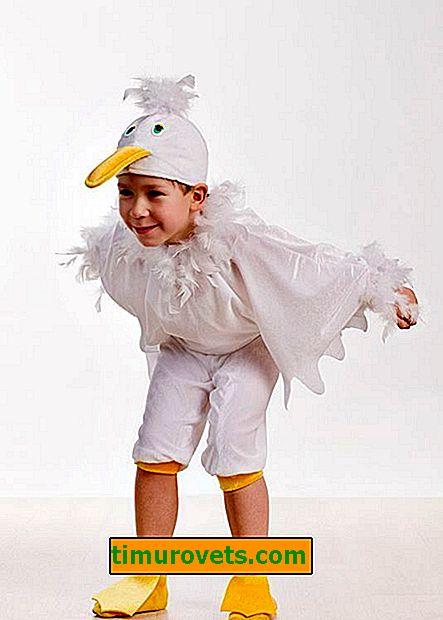 Husí kostým pro kutily pro chlapce