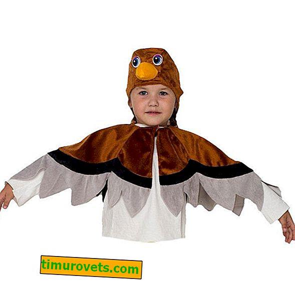 Napravite kostim vrapca za dječaka