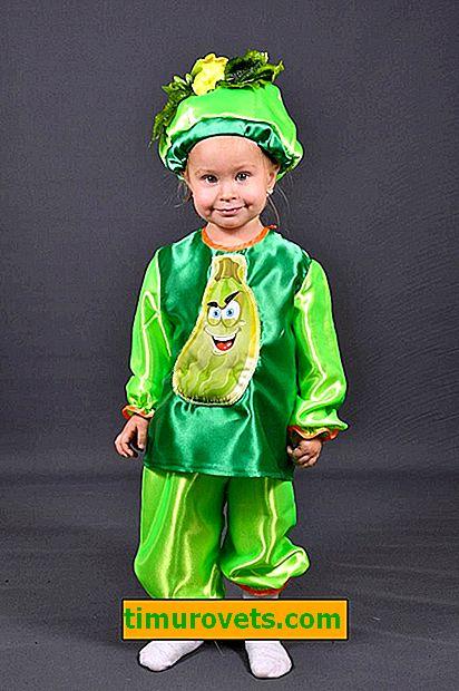 Disfraz de calabacín para un niño con sus propias manos photo