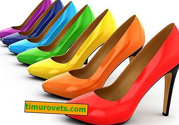 Chaussures zodiac