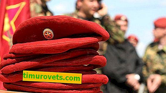 Hvordan bestemme kraftenheten etter fargen på basetten i Russland