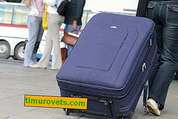 Размерът на куфара за багаж в самолета (размери)