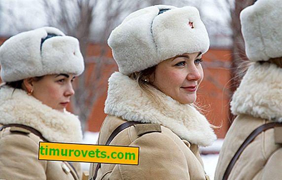¿Qué es un abrigo de piel de oveja?