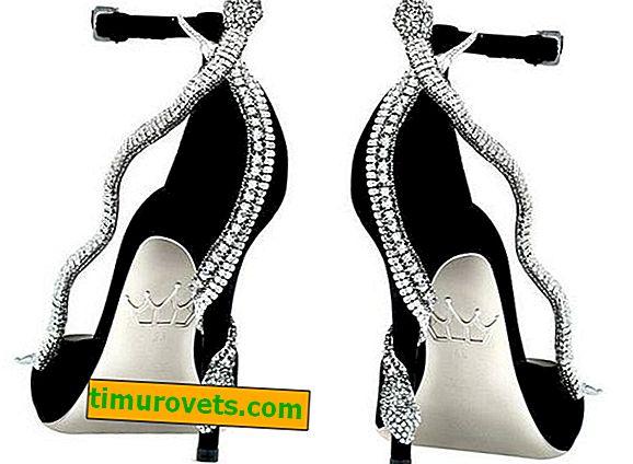 Най-красивите обувки в света