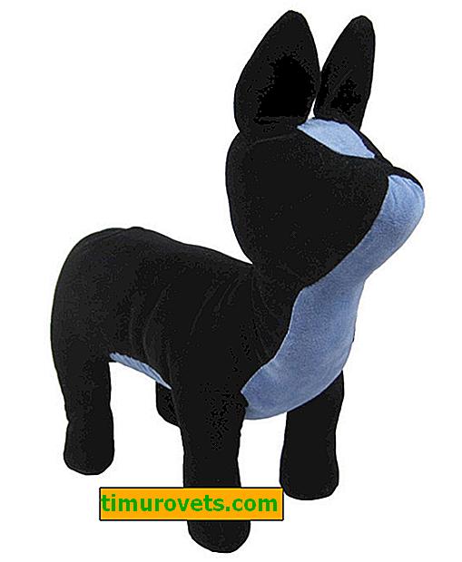 DIY honden etalagepop
